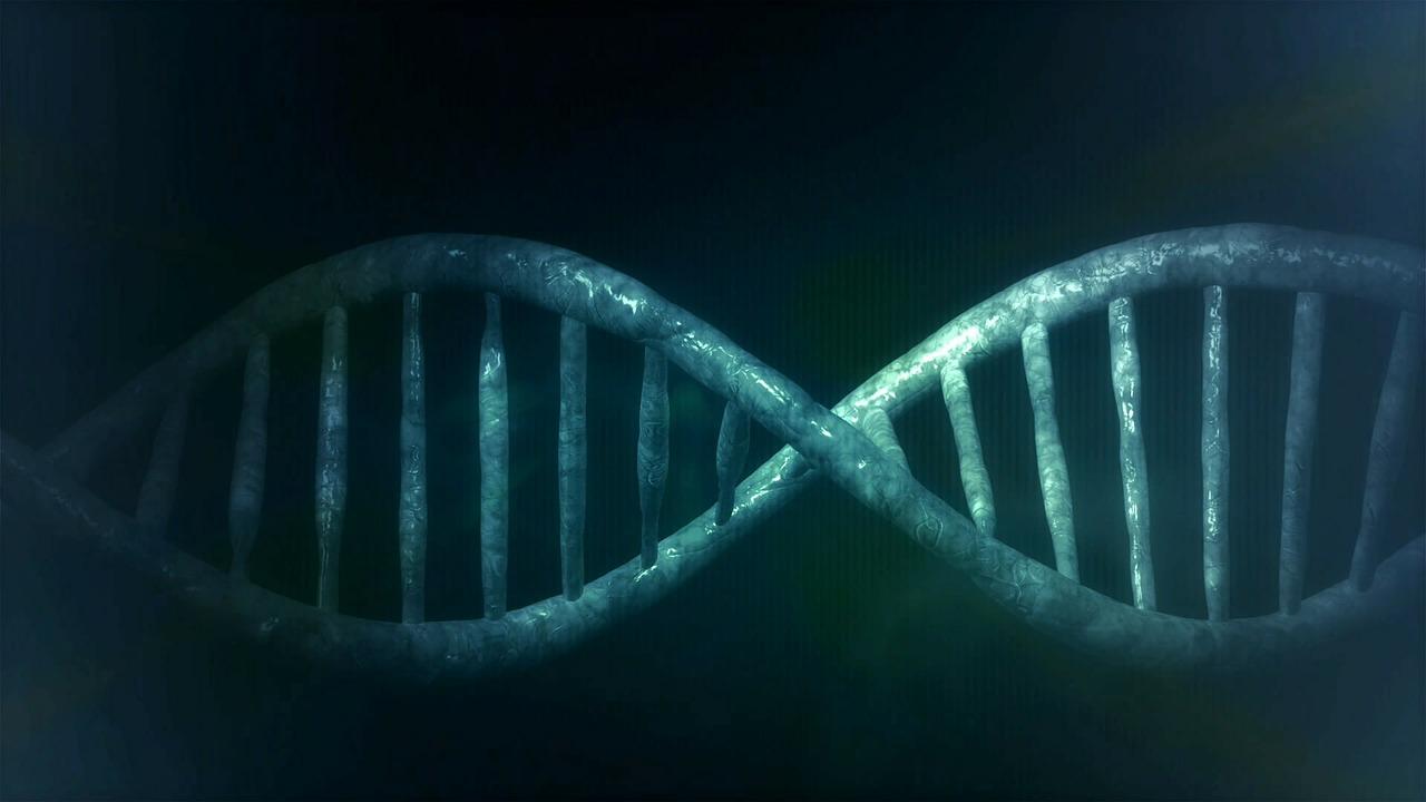 Test ADN : quels sont ses avantages ?